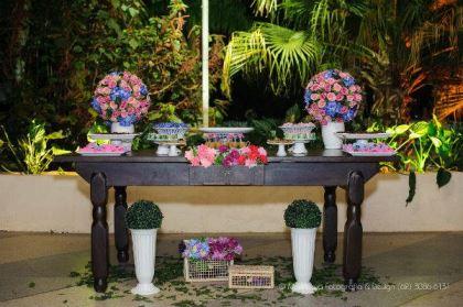 casamento-economico-ao-ar-livre-goiania-rosa-e-azul-rustico (30)