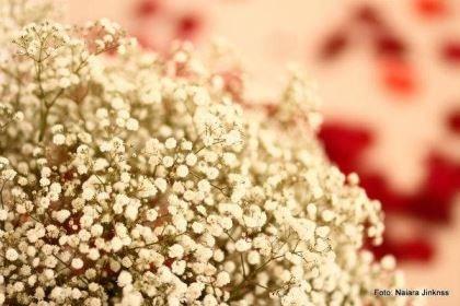 casamento-mini-wedding-2800-reais-brasilia-salao-do-predio (16)