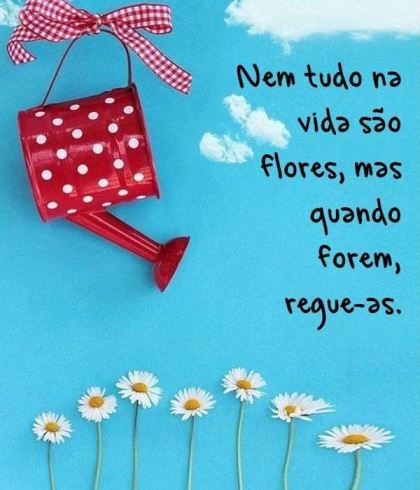 nem-tudo-sao-flores
