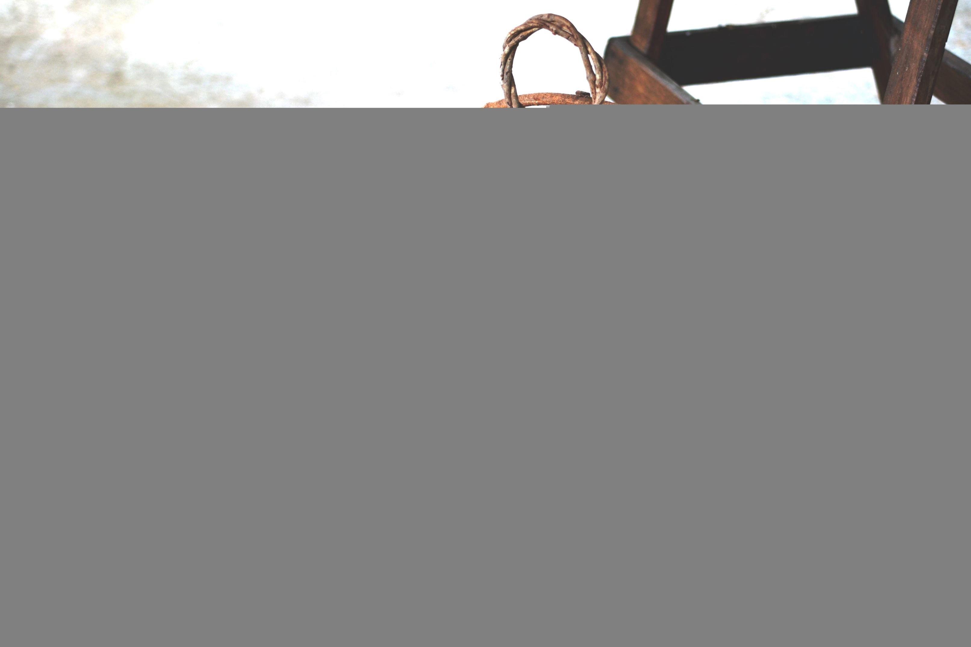 kelly-e-leandro-pipoca-e-pezao-casamento-real-no-campo (1)