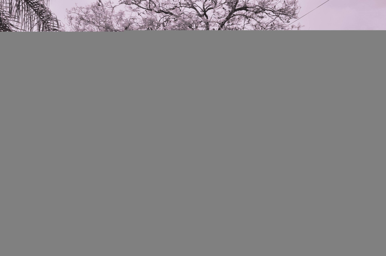 kelly-e-leandro-pipoca-e-pezao-casamento-real-no-campo (25)