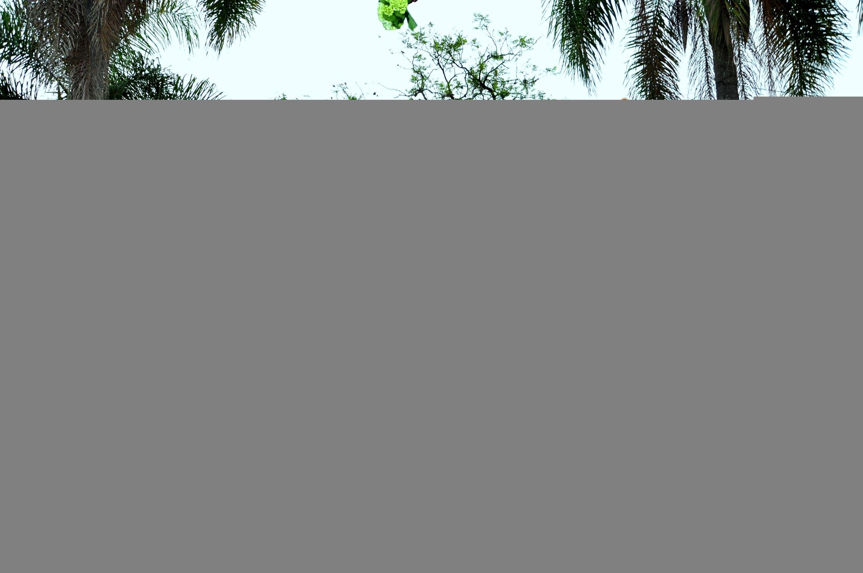 kelly-e-leandro-pipoca-e-pezao-casamento-real-no-campo (30)