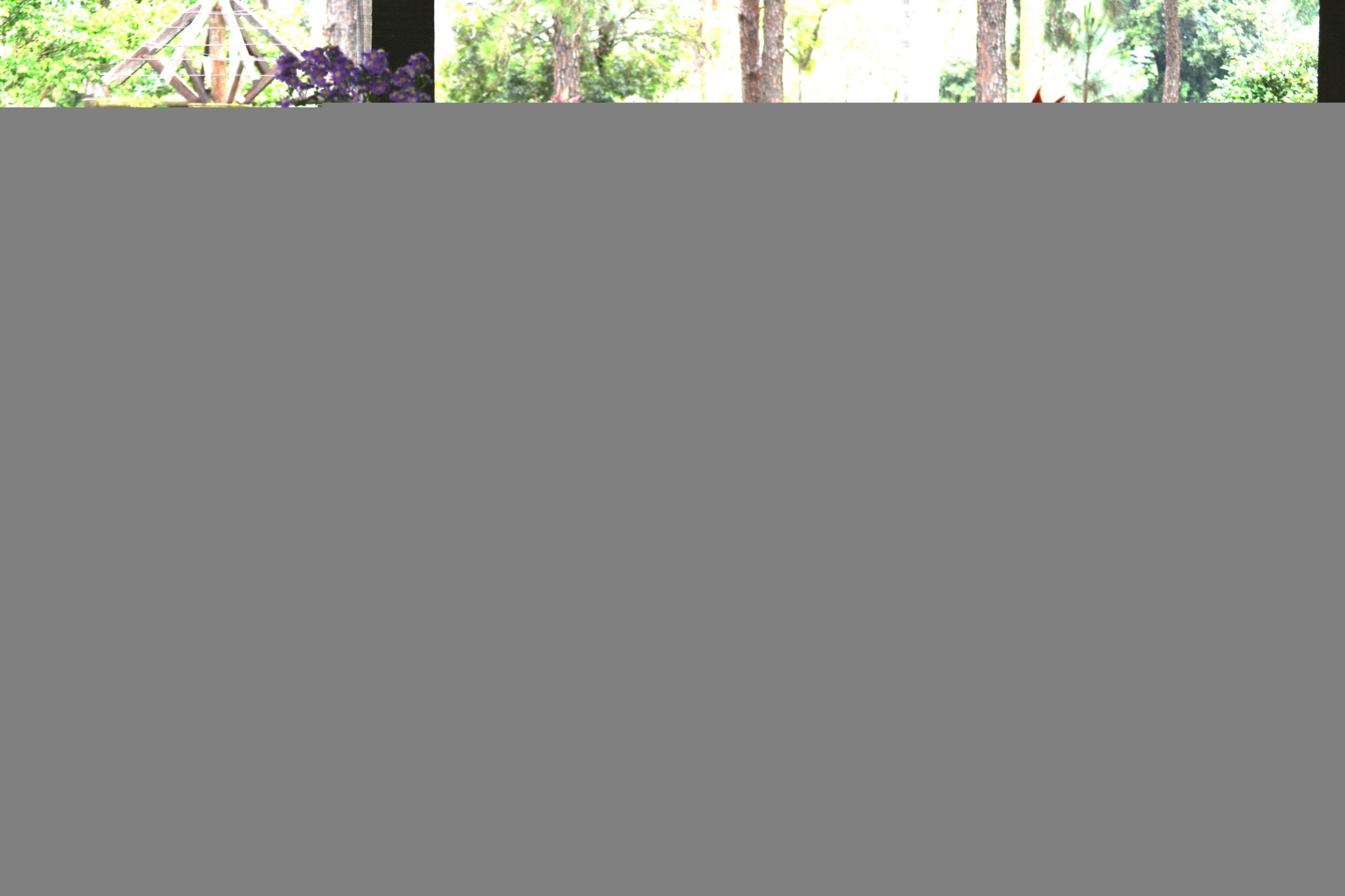 kelly-e-leandro-pipoca-e-pezao-casamento-real-no-campo (7)