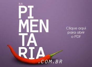 PDF Pimentaria com proposta do chá de lingerie